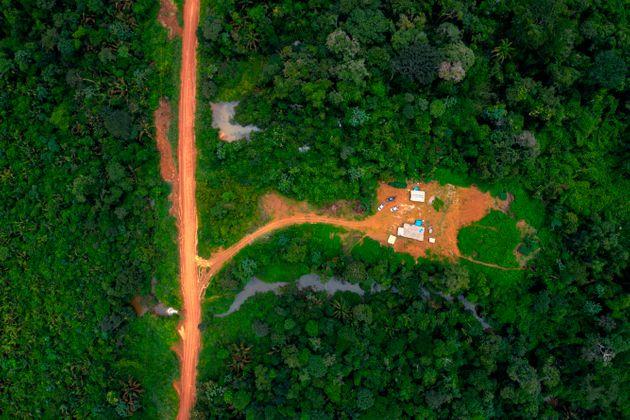 Bolsonaro nega i dati scomodi sulla deforestazione e intanto l'Amazzonia soffre