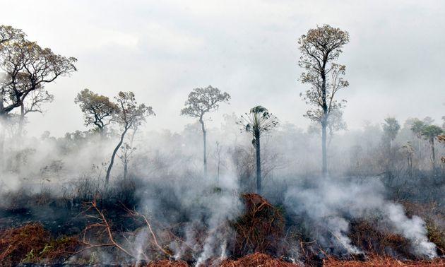 La Bolivia incendiata di Evo Morales