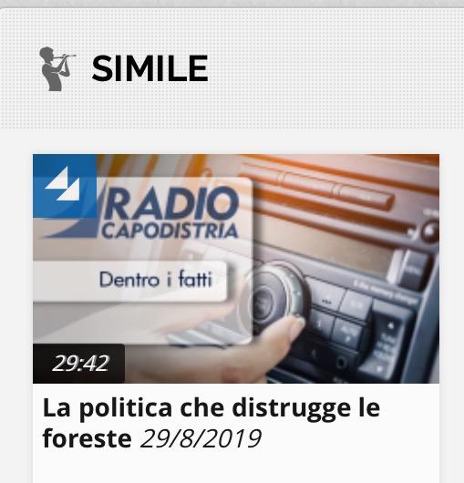 LA POLITICA CHE DISTRUGGE LE FORESTE